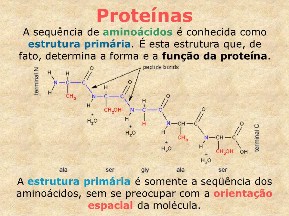 Proteínas A sequência de aminoácidos é conhecida como estrutura primária.