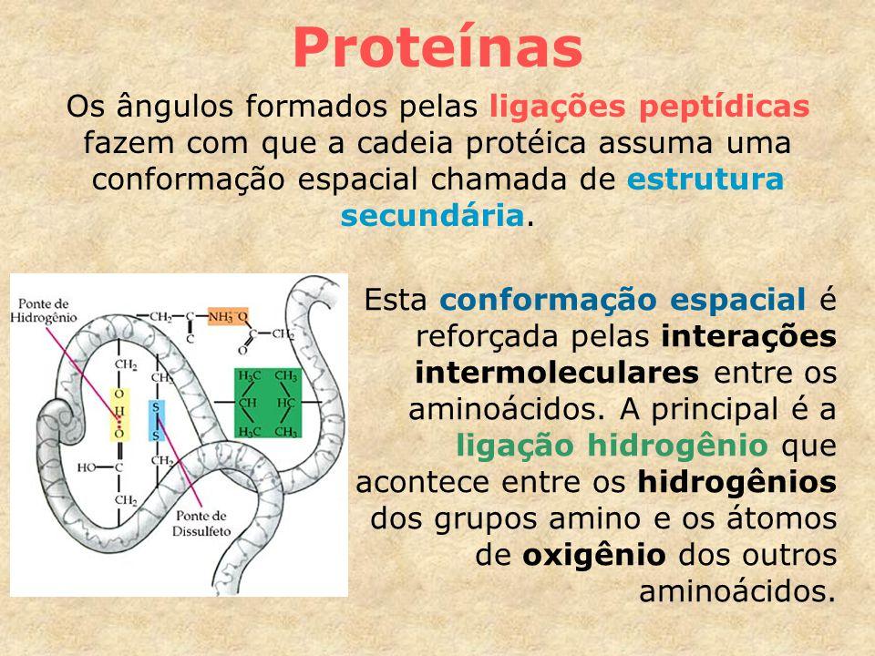 Proteínas Os ângulos formados pelas ligações peptídicas fazem com que a cadeia protéica assuma uma conformação espacial chamada de estrutura secundária.