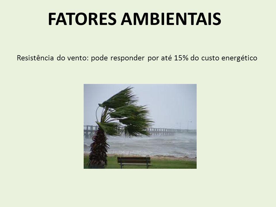 FADIGA Ventilação FC Temperatura ECONOMIA DE CORRIDA Piora a sensação subjetiva de cansaço e a motivação