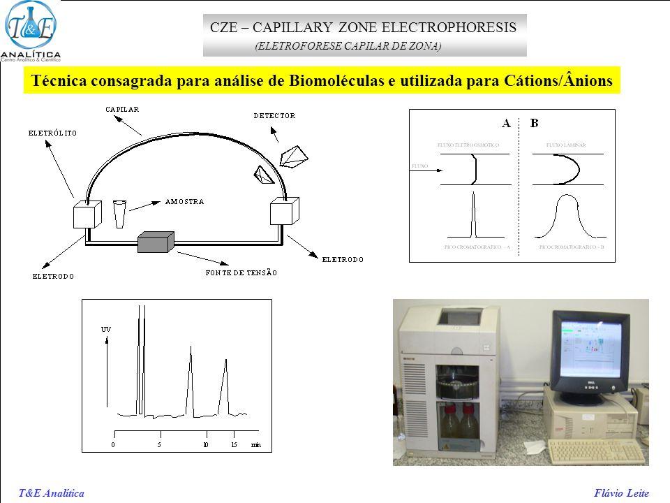 T&E Analítica Flávio Leite CZE – CAPILLARY ZONE ELECTROPHORESIS (ELETROFORESE CAPILAR DE ZONA) Técnica consagrada para análise de Biomoléculas e utili