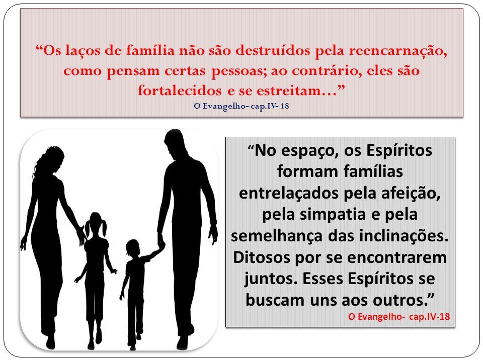 """""""Os laços de família não são destruídos pela reencarnação, como pensam certas pessoas; ao contrário, eles são fortalecidos e se estreitam…"""" O Evangelh"""