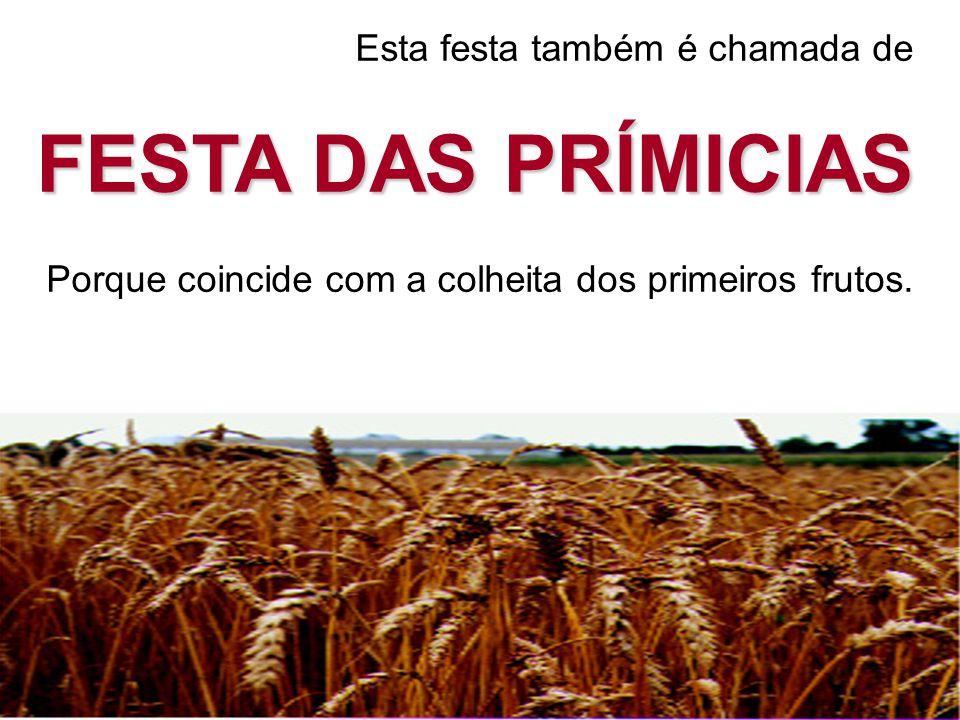 Esta festa também é chamada de FESTA DAS PRÍMICIAS Porque coincide com a colheita dos primeiros frutos.