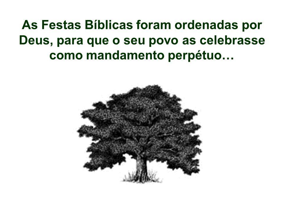 As Festas Bíblicas foram ordenadas por Deus, para que o seu povo as celebrasse como mandamento perpétuo…