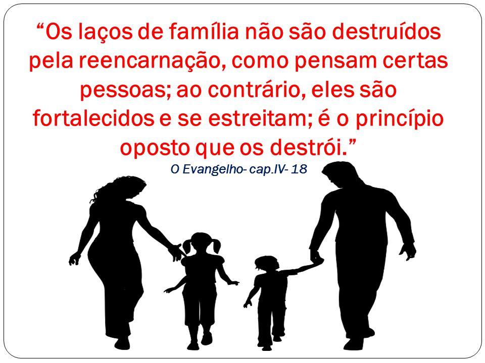 """""""Os laços de família não são destruídos pela reencarnação, como pensam certas pessoas; ao contrário, eles são fortalecidos e se estreitam; é o princíp"""