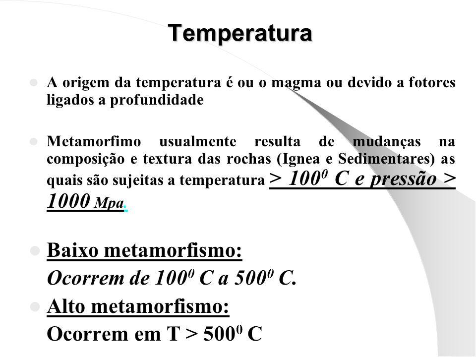 A origem da temperatura é ou o magma ou devido a fotores ligados a profundidade Metamorfimo usualmente resulta de mudanças na composição e textura das rochas (Ignea e Sedimentares) as quais são sujeitas a temperatura > 100 0 C e pressão > 1000 Mpa.