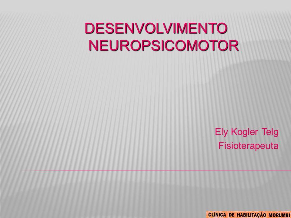 DESENVOLVIMENTO NEUROPSICOMOTOR Ely Kogler Telg Fisioterapeuta