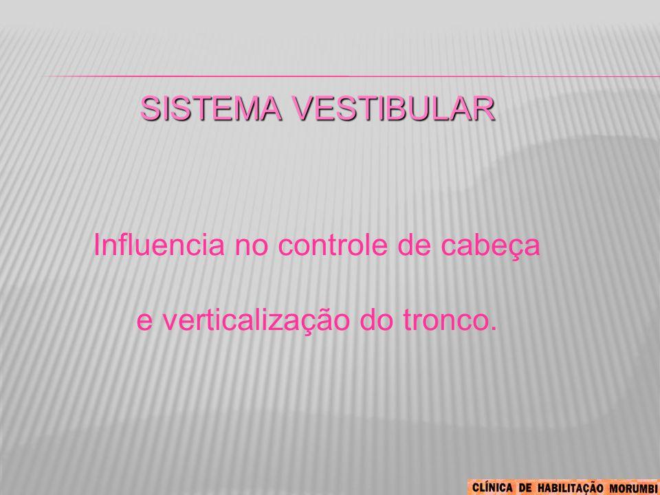 SISTEMA VESTIBULAR Influencia no controle de cabeça e verticalização do tronco.