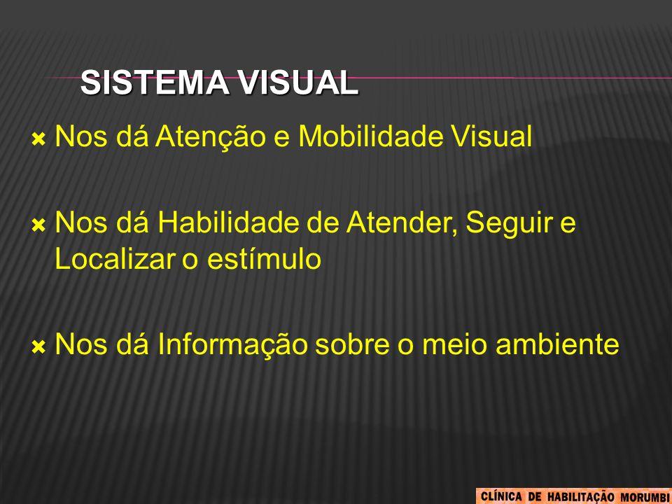 SISTEMA VISUAL  Nos dá Atenção e Mobilidade Visual  Nos dá Habilidade de Atender, Seguir e Localizar o estímulo  Nos dá Informação sobre o meio amb