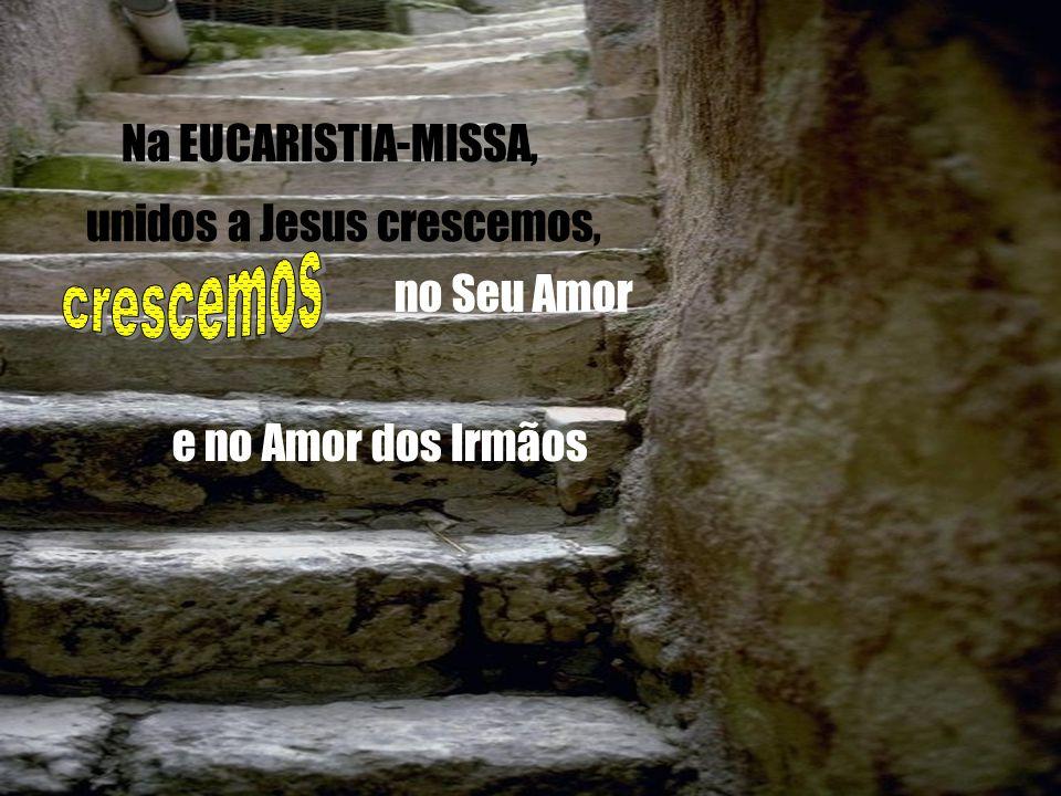 O DOMINGO É O DIA DA EUCARISTIA A palavra eucaristia significa acção de graças Os cristãos reúnem-se na EUCARISTIA dando graças ao Pai, pela oferta da