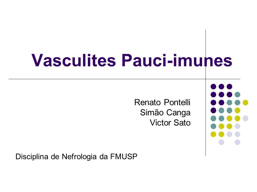 Vasculites Pauci-imunes Renato Pontelli Simão Canga Victor Sato Disciplina de Nefrologia da FMUSP