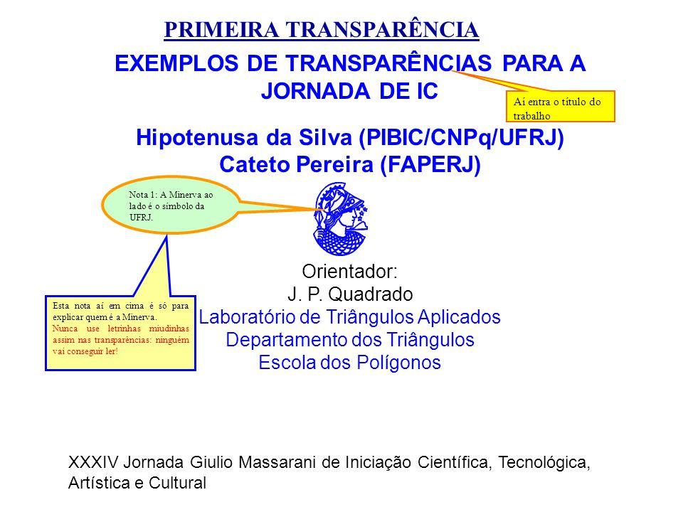 EXEMPLOS DE TRANSPARÊNCIAS PARA A JORNADA DE IC Hipotenusa da Silva (PIBIC/CNPq/UFRJ) Cateto Pereira (FAPERJ) Orientador: J. P. Quadrado Laboratório d