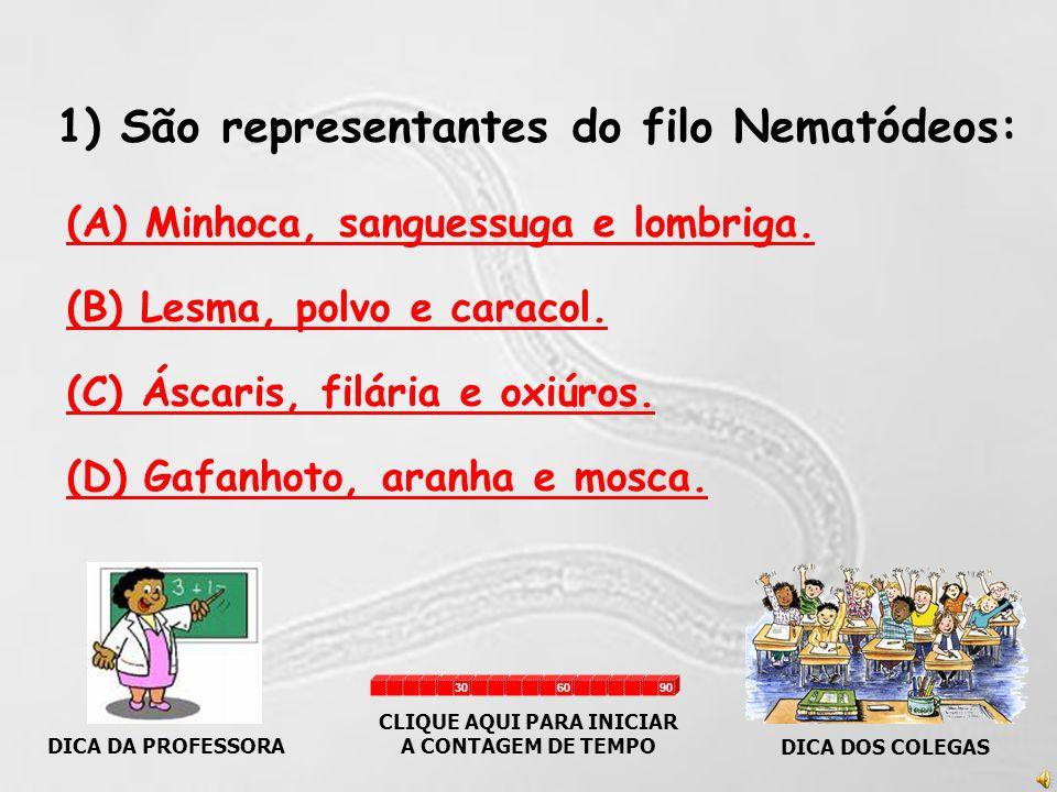 1) São representantes do filo Nematódeos: (A) Minhoca, sanguessuga e lombriga.