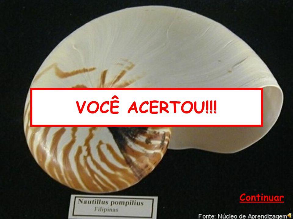 10) São larvas dos moluscos: (A) Anfiblástula. (B) Plânula e cisticerco. (C) Trocófora e véliger. (D) Cecária e miracídios. DICA DA PROFESSORA DICA DO