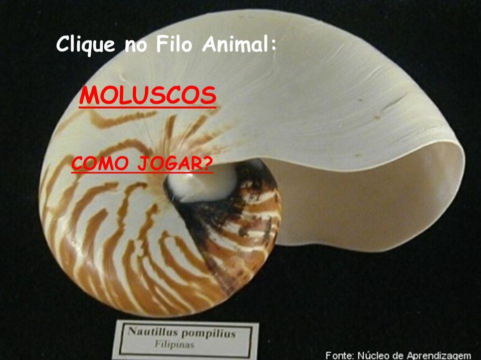 10) São larvas dos moluscos: (A) Anfiblástula.(B) Plânula e cisticerco.