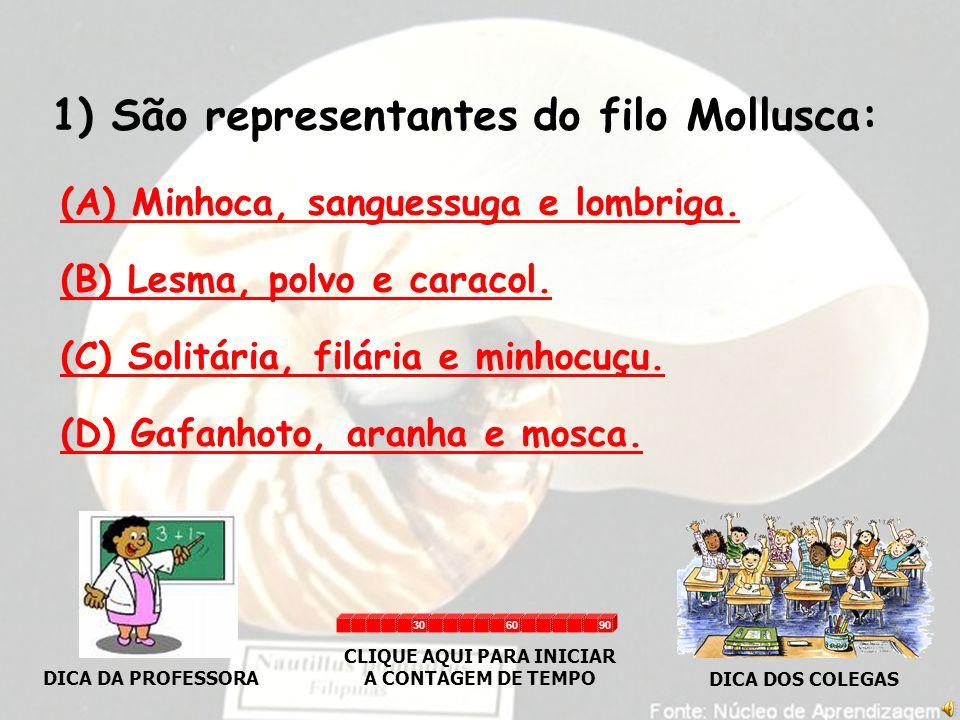 1) São representantes do filo Mollusca: (A) Minhoca, sanguessuga e lombriga.