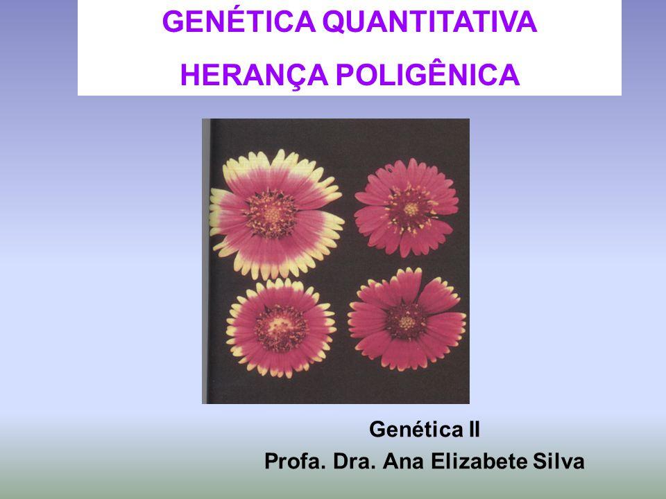 Genética II Profa. Dra. Ana Elizabete Silva GENÉTICA QUANTITATIVA HERANÇA POLIGÊNICA