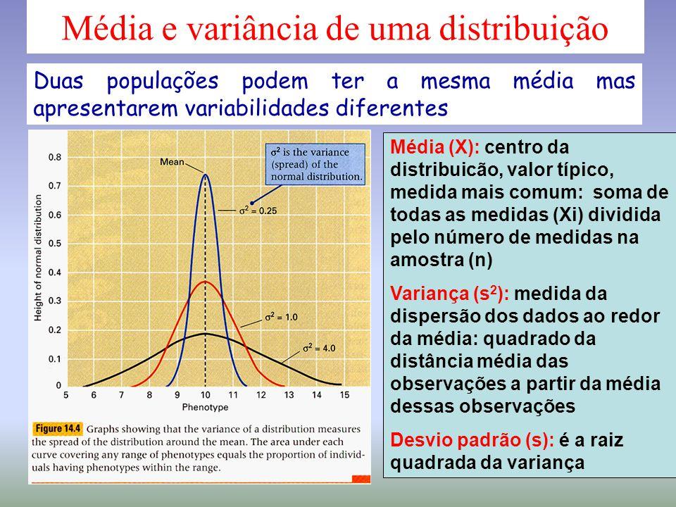 Média e variância de uma distribuição Média (X): centro da distribuicão, valor típico, medida mais comum: soma de todas as medidas (Xi) dividida pelo