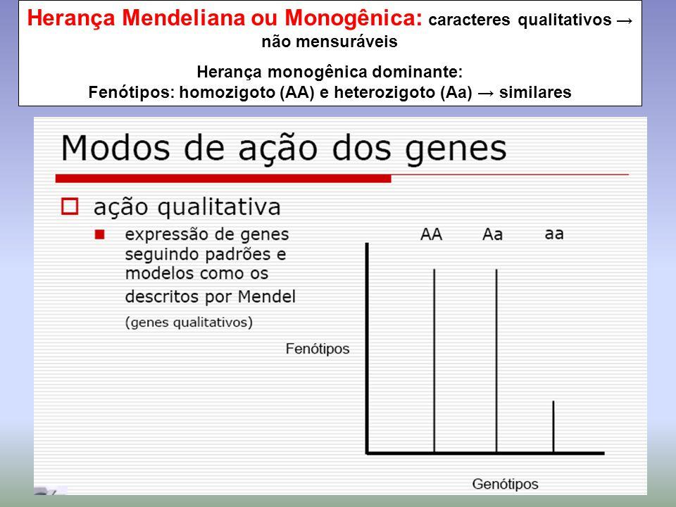 Herança Mendeliana ou Monogênica: caracteres qualitativos → não mensuráveis Herança monogênica dominante: Fenótipos: homozigoto (AA) e heterozigoto (A