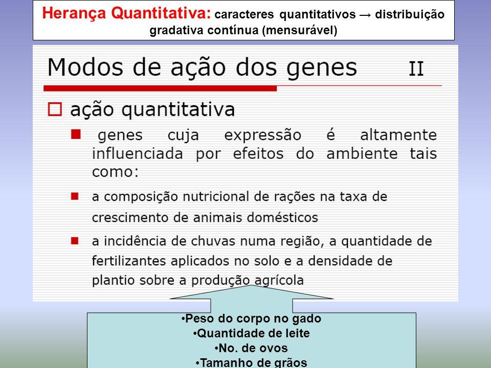 GENÉTICA QUANTITATIVA: parte da genética que estuda os caracteres quantitativos HERANÇA POLIGÊNICA: herança dos caracteres quantitativos, regulado por vários genes HERANÇA MULTIFATORIAL ou HERANÇA de CARACTERÍSTICAS COMPLEXAS: interação de fatôres genéticos e ambientais