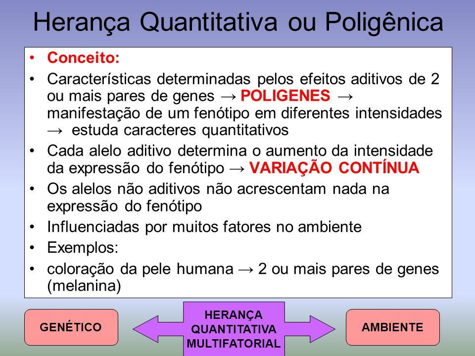 Herança Quantitativa ou Poligênica Conceito: Características determinadas pelos efeitos aditivos de 2 ou mais pares de genes → POLIGENES → manifestaçã