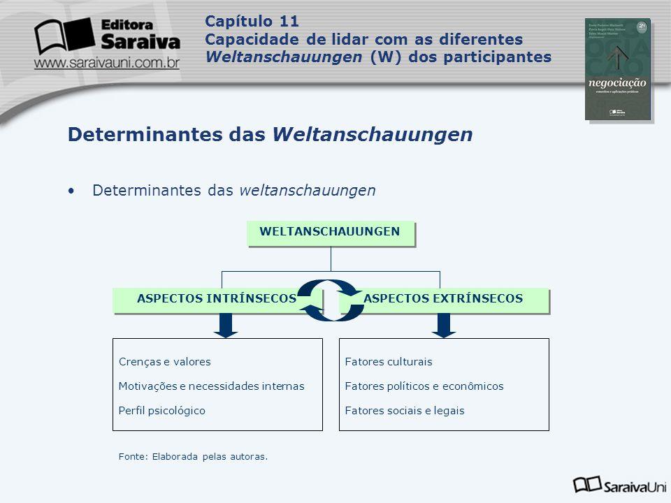 Capa da Obra Capítulo 11 Capacidade de lidar com as diferentes Weltanschauungen (W) dos participantes Determinantes das weltanschauungen Determinantes