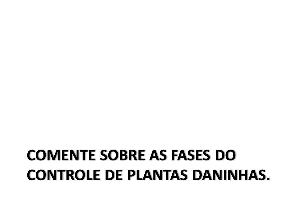 COMENTE SOBRE AS FASES DO CONTROLE DE PLANTAS DANINHAS.