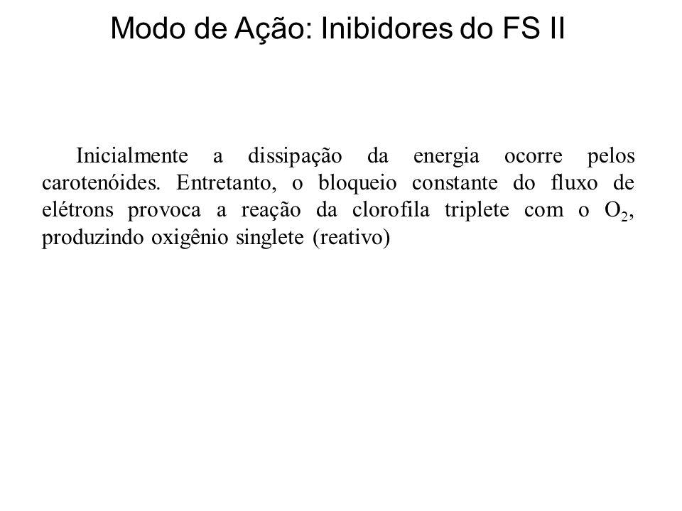 Modo de Ação: Inibidores do FS II Inicialmente a dissipação da energia ocorre pelos carotenóides.
