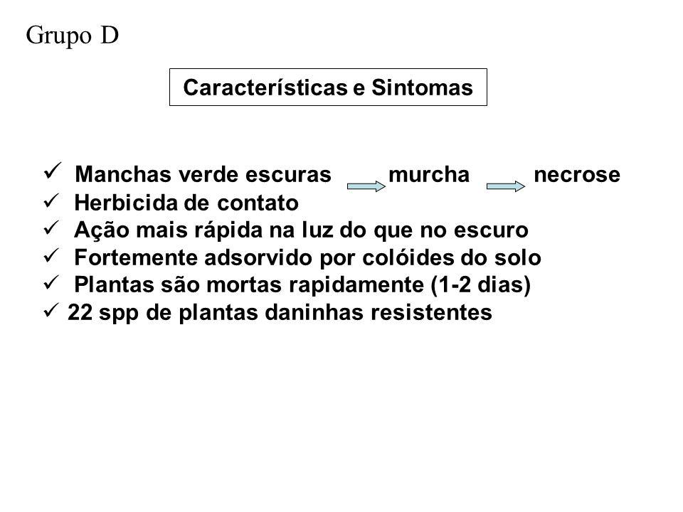 Características e Sintomas Manchas verde escuras murcha necrose Herbicida de contato Ação mais rápida na luz do que no escuro Fortemente adsorvido por colóides do solo Plantas são mortas rapidamente (1-2 dias) 22 spp de plantas daninhas resistentes Grupo D