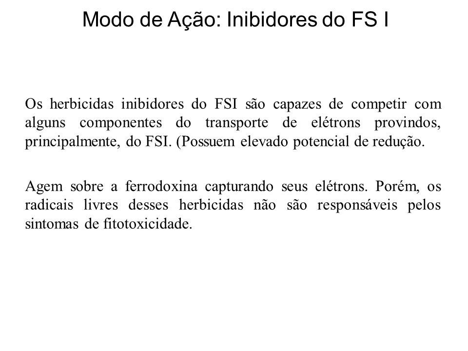 Os herbicidas inibidores do FSI são capazes de competir com alguns componentes do transporte de elétrons provindos, principalmente, do FSI.