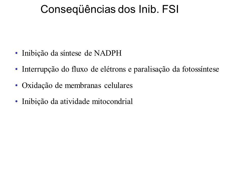 Inibição da síntese de NADPH Interrupção do fluxo de elétrons e paralisação da fotossíntese Oxidação de membranas celulares Inibição da atividade mitocondrial Conseqüências dos Inib.