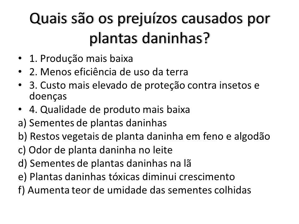 Quais os principais prejuízos as saúde humana casados por plantas Daninhas.