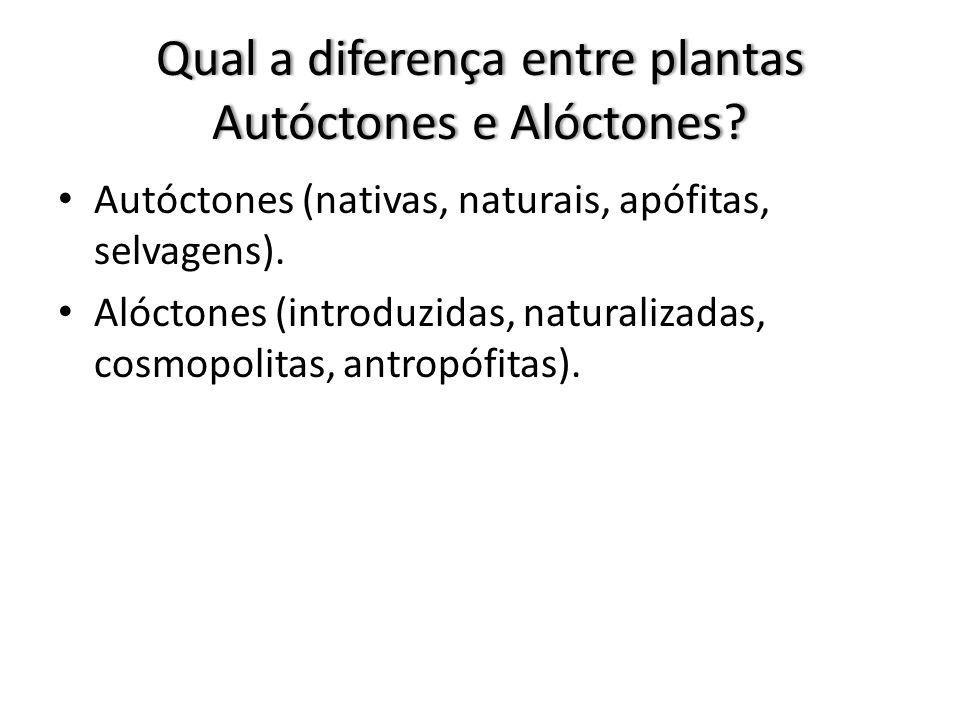 Qual a diferença entre plantas Autóctones e Alóctones.