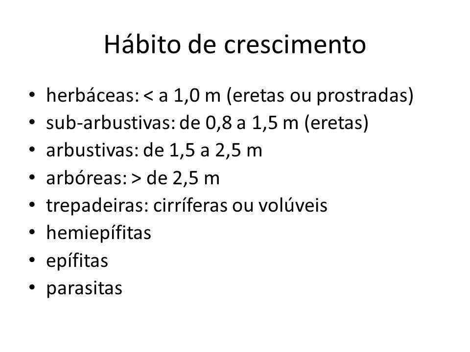 Hábito de crescimento herbáceas: < a 1,0 m (eretas ou prostradas) sub-arbustivas: de 0,8 a 1,5 m (eretas) arbustivas: de 1,5 a 2,5 m arbóreas: > de 2,5 m trepadeiras: cirríferas ou volúveis hemiepífitas epífitas parasitas