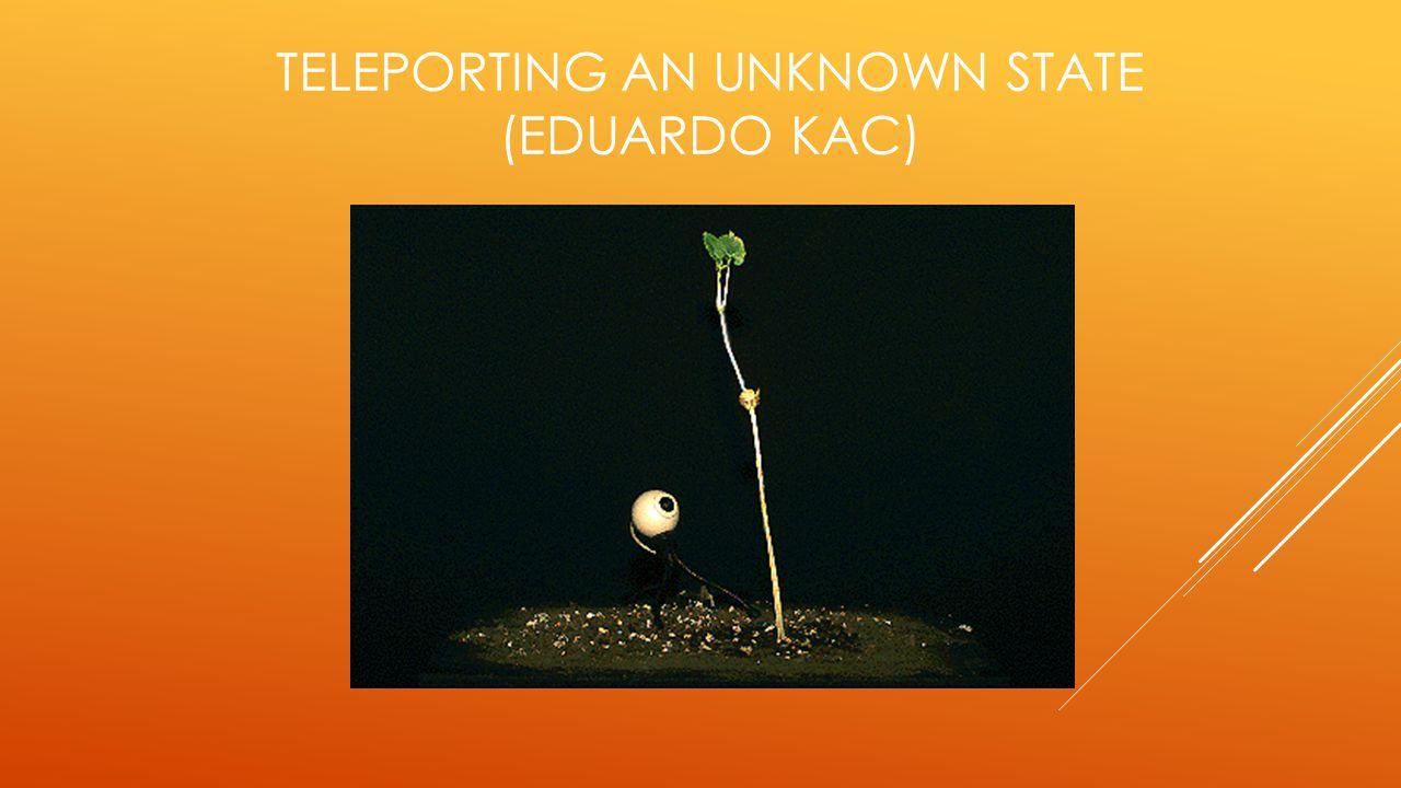  Nesta modesta instalação feita para a Siggraph 96, Kac conseguiu criar sua melhor metáfora da nova ecologia da biosfera.