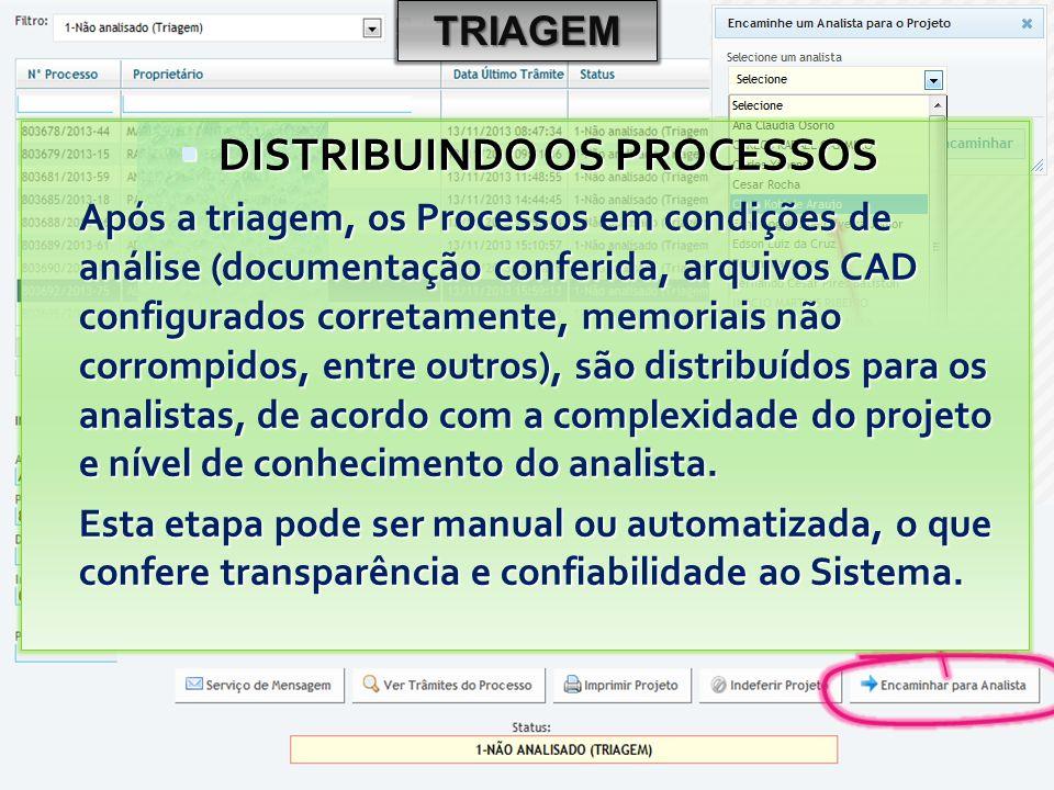 TRIAGEM  DISTRIBUINDO OS PROCESSOS Após a triagem, os Processos em condições de análise (documentação conferida, arquivos CAD configurados corretamente, memoriais não corrompidos, entre outros), são distribuídos para os analistas, de acordo com a complexidade do projeto e nível de conhecimento do analista.