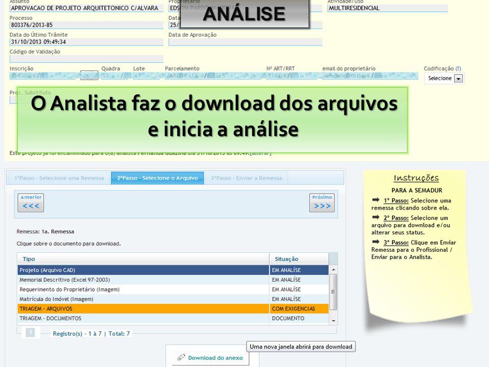 O Analista faz o download dos arquivos e inicia a análise ANÁLISE