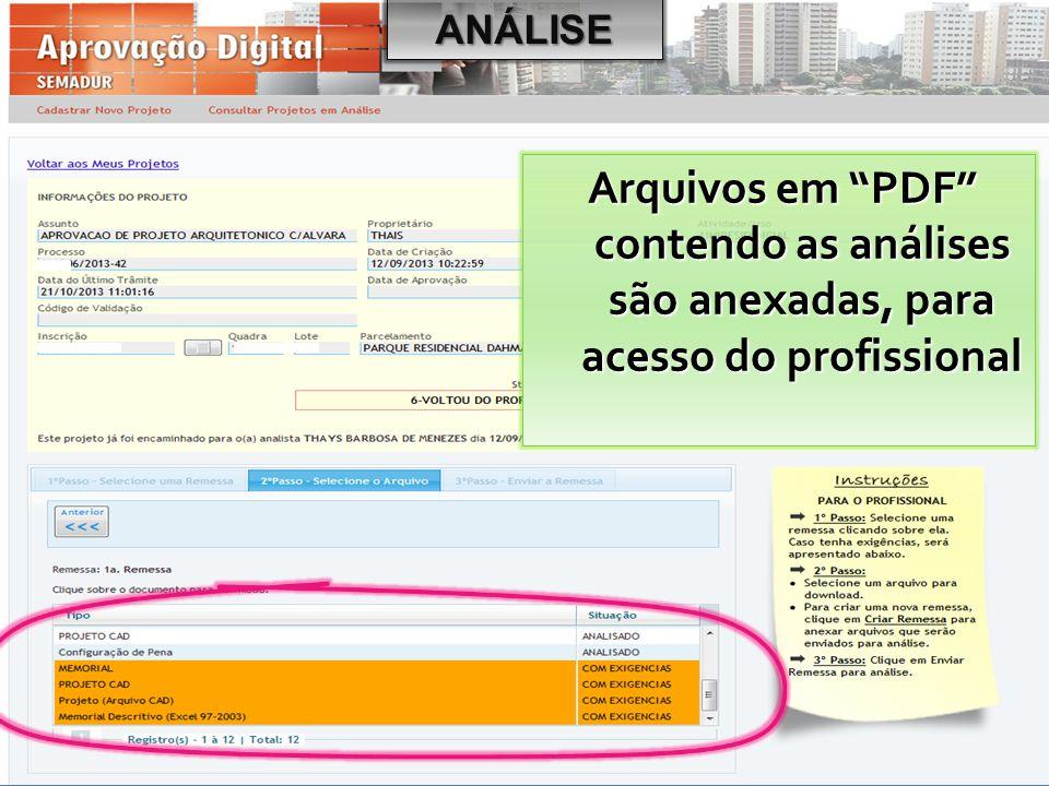 """ANÁLISE Arquivos em """"PDF"""" contendo as análises são anexadas, para acesso do profissional"""
