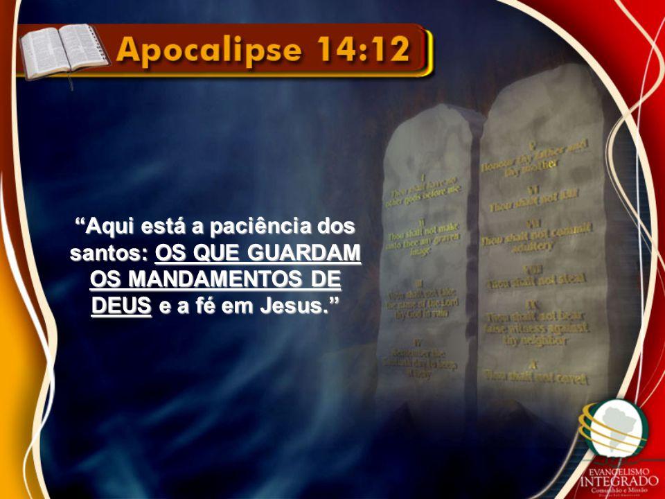 """""""Aqui está a paciência dos santos: OS QUE GUARDAM OS MANDAMENTOS DE DEUS e a fé em Jesus."""""""