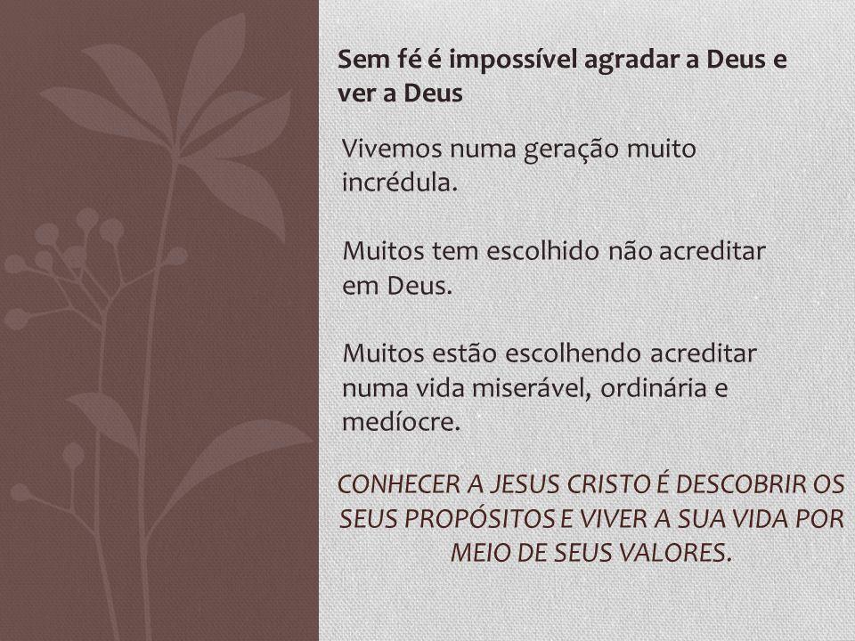CONHECER A JESUS CRISTO É DESCOBRIR OS SEUS PROPÓSITOS E VIVER A SUA VIDA POR MEIO DE SEUS VALORES. Sem fé é impossível agradar a Deus e ver a Deus Vi