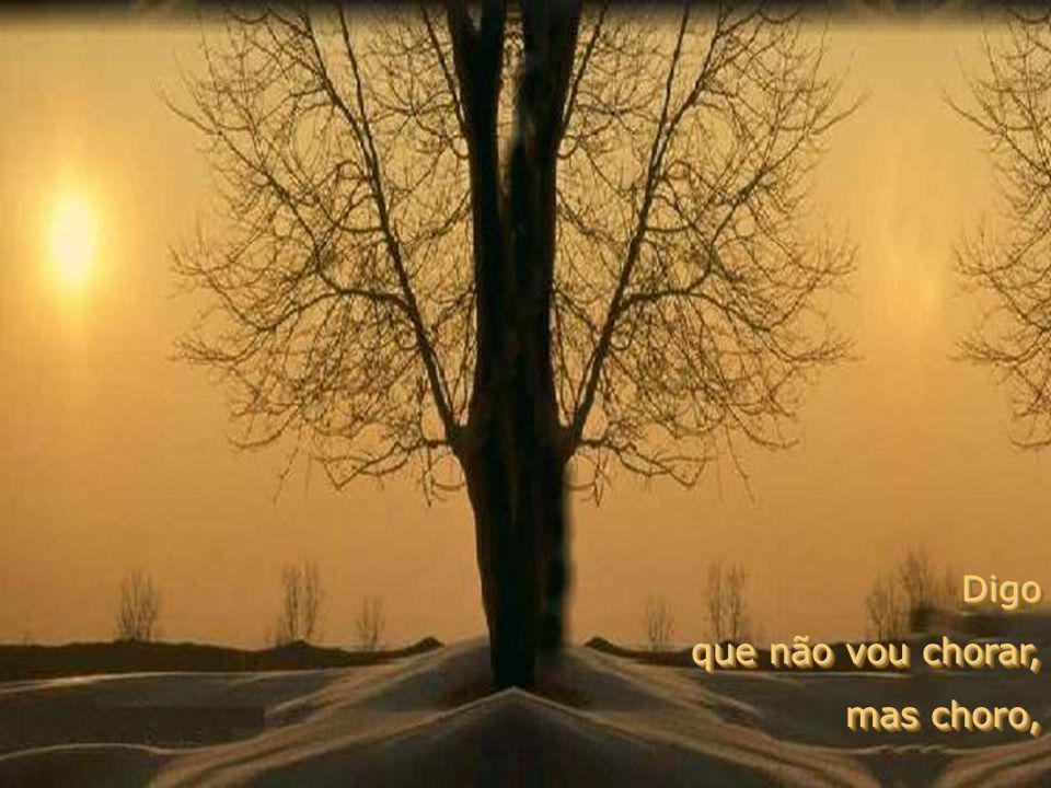 Digo que não vou chorar, mas choro, Digo que não vou chorar, mas choro,