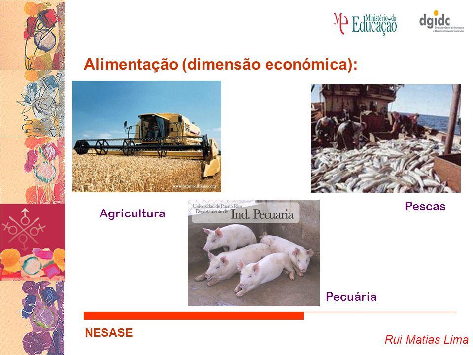 Rui Matias Lima NESASE Alimentação (dimensão económica): … Importância da alimentação nas economias regional, nacional e internacional…