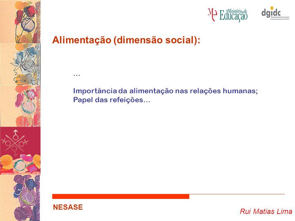 Rui Matias Lima NESASE Alimentação (dimensão cultural): Família Chadiana – Orçamento semanal ≃ 1,23 dólares Família Equatoriana – Orçamento semanal ≃ 31,55 dólares Família Alemã – Orçamento semanal ≃ 500,07 dólares