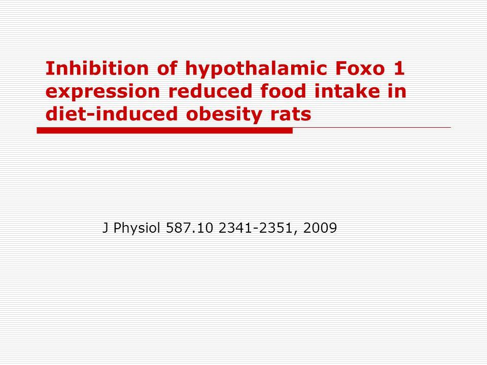 Desequilíbrio entre ingestão alimentar e gasto energético Obesidade