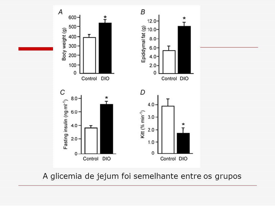 A glicemia de jejum foi semelhante entre os grupos