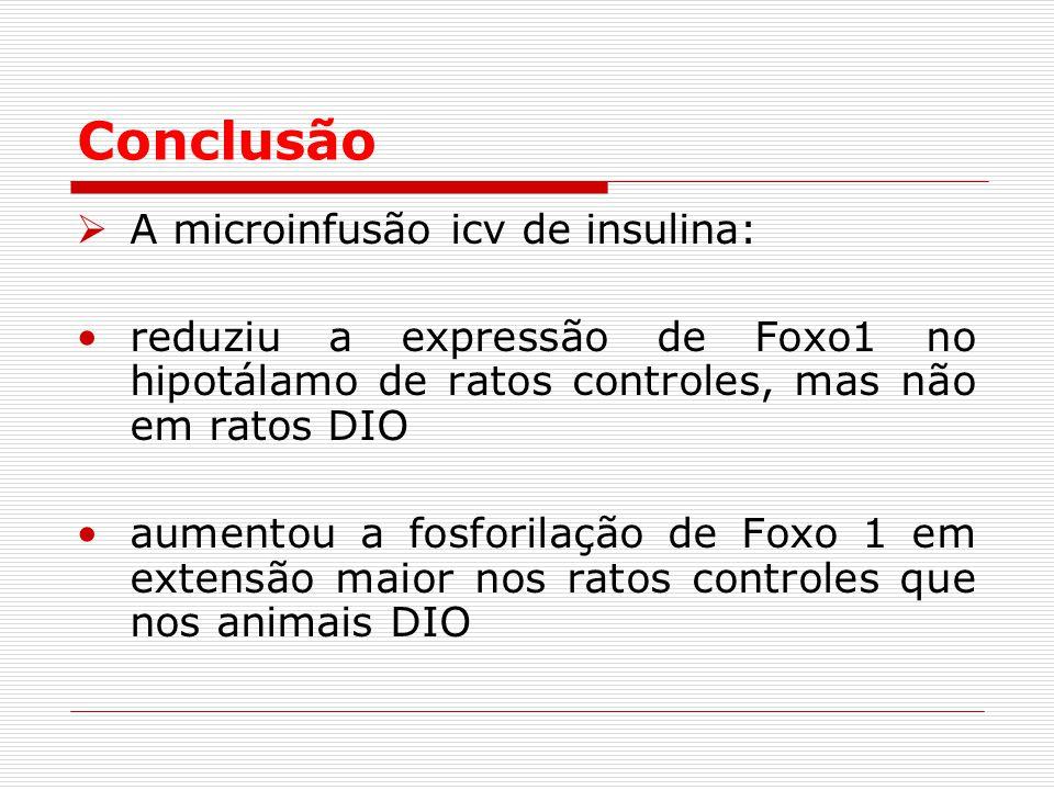 Conclusão  A microinfusão icv de insulina: reduziu a expressão de Foxo1 no hipotálamo de ratos controles, mas não em ratos DIO aumentou a fosforilação de Foxo 1 em extensão maior nos ratos controles que nos animais DIO