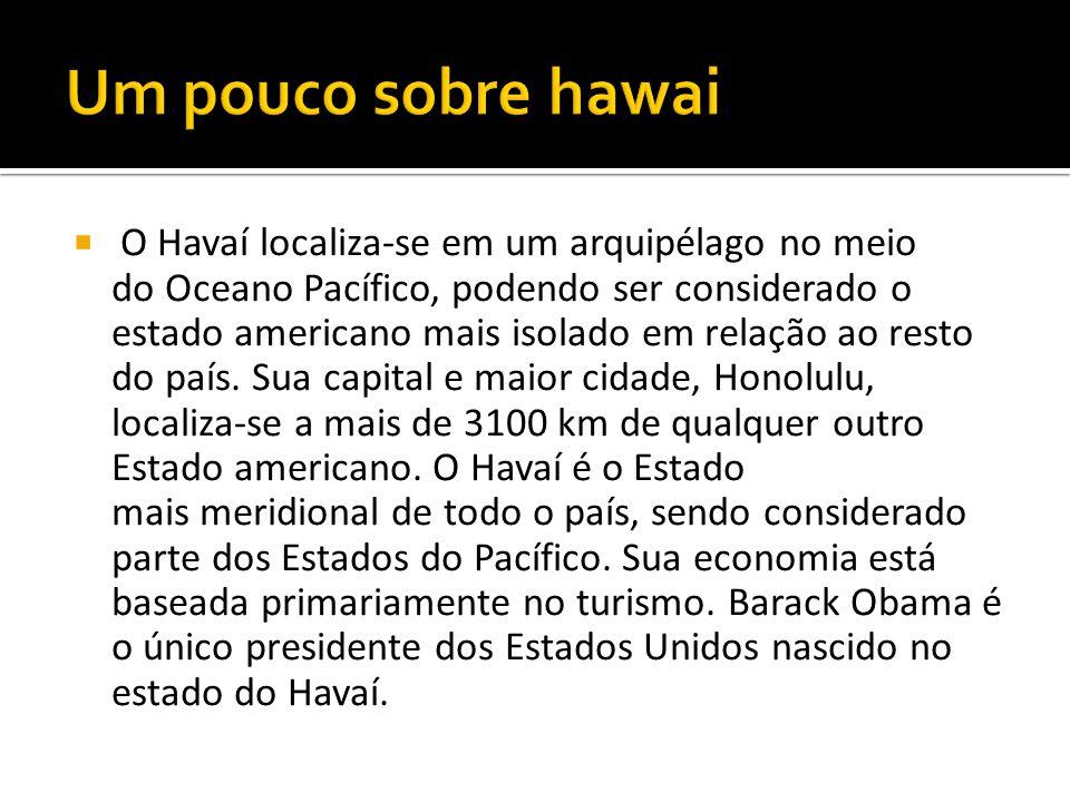  O Havaí localiza-se em um arquipélago no meio do Oceano Pacífico, podendo ser considerado o estado americano mais isolado em relação ao resto do paí