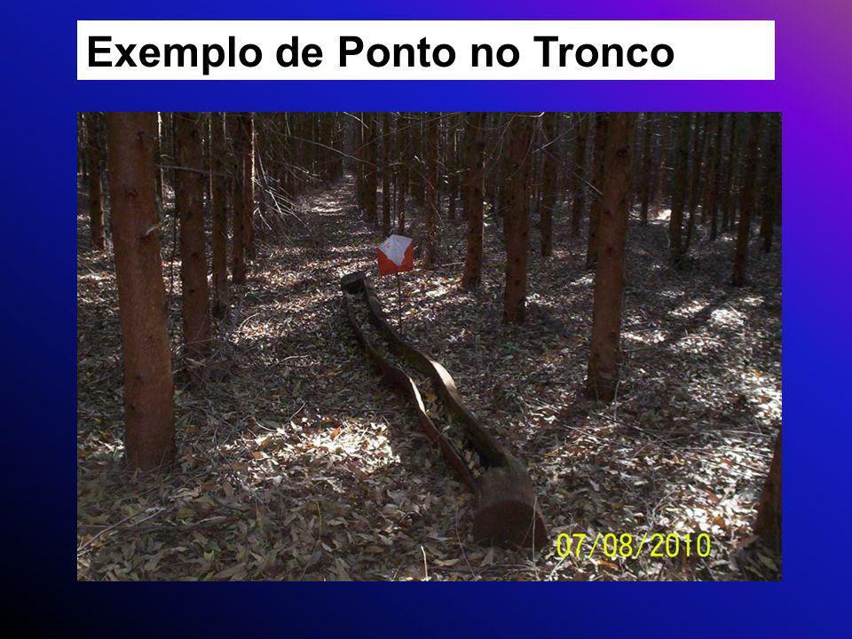 Exemplo de Ponto no Tronco
