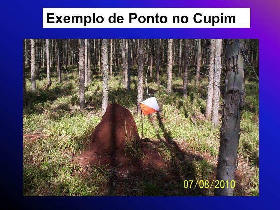 Exemplo de Ponto no Cupim