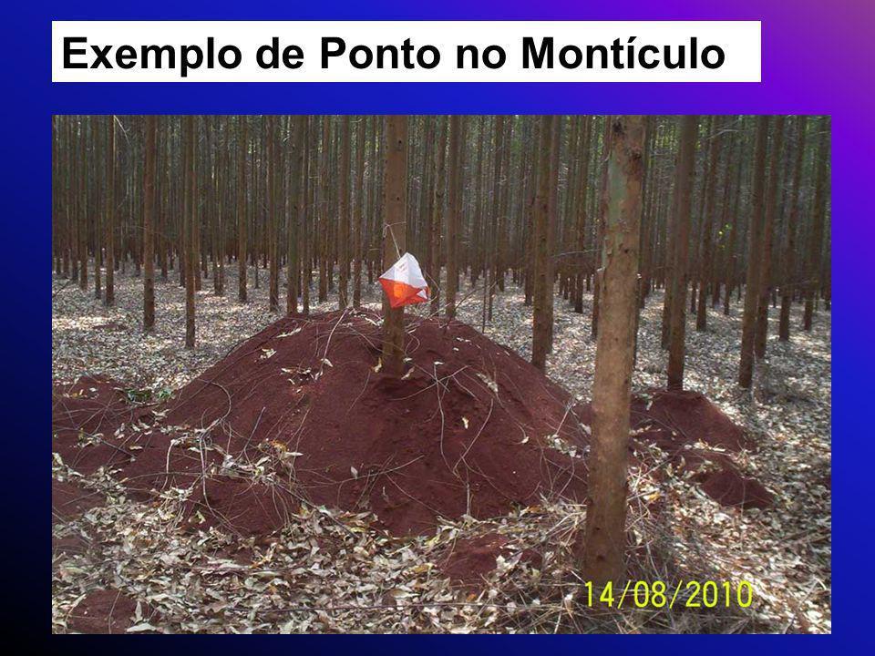 Exemplo de Ponto no Montículo