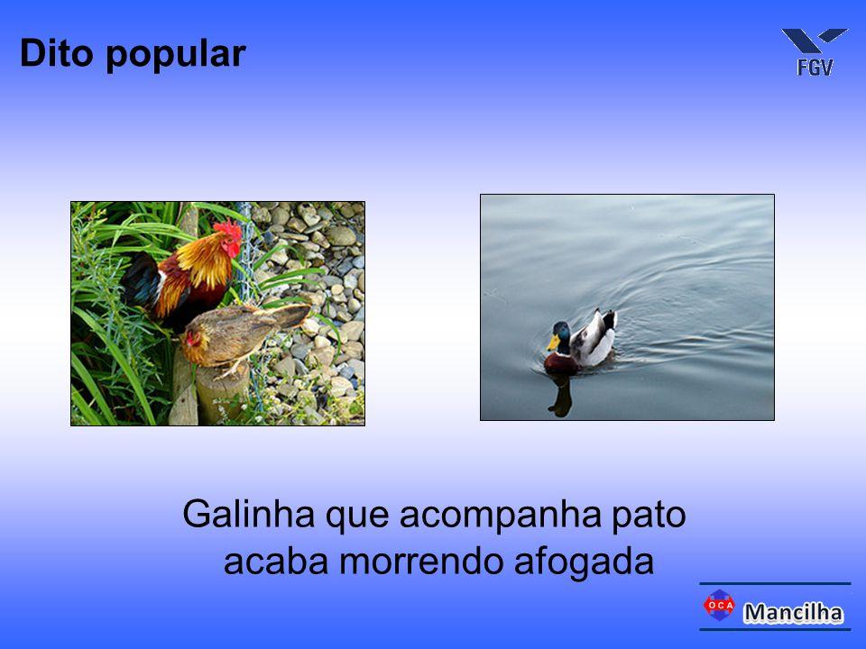 Galinha que acompanha pato acaba morrendo afogada Dito popular